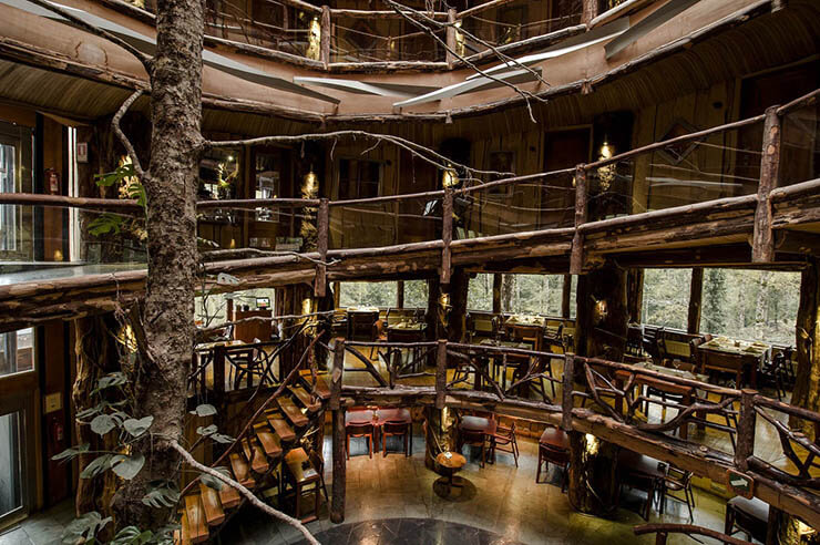 luxury-rustic-hotel-chile-rainforest