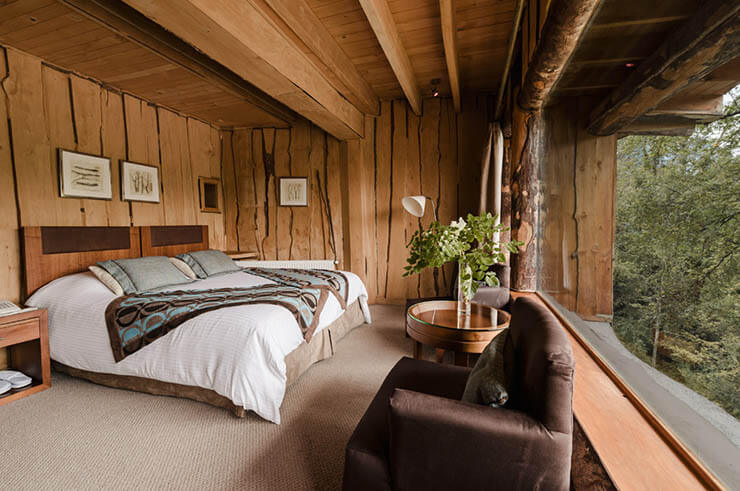 luxury-wooden-room-view-chilean-forest